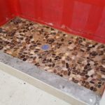 Shower floor in and grouted. You can see the waterproofing layer (red)